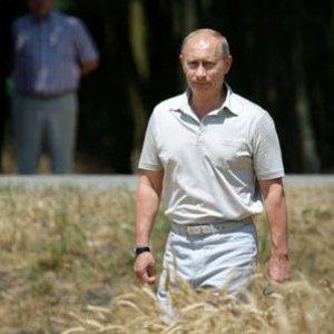 Путин: на земле должны работать только надёжные хозяева